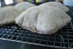 Homemade Whole Wheat Pita Bread (Bread Machine)