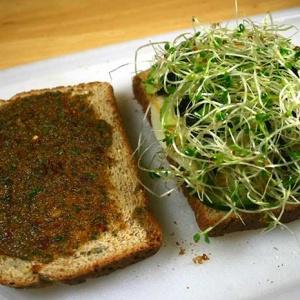 Three-Cheese Veggie Sandwich with Sun-dried Tomato Walnut Pesto